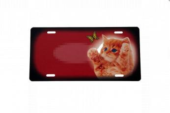 Orange kattekilling rødt skilt